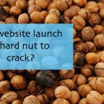 How to Launch a Website, Attract Traffic and Make Sales