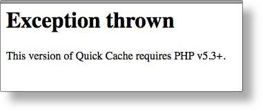 Quick Cache Exception Thrown - Error message