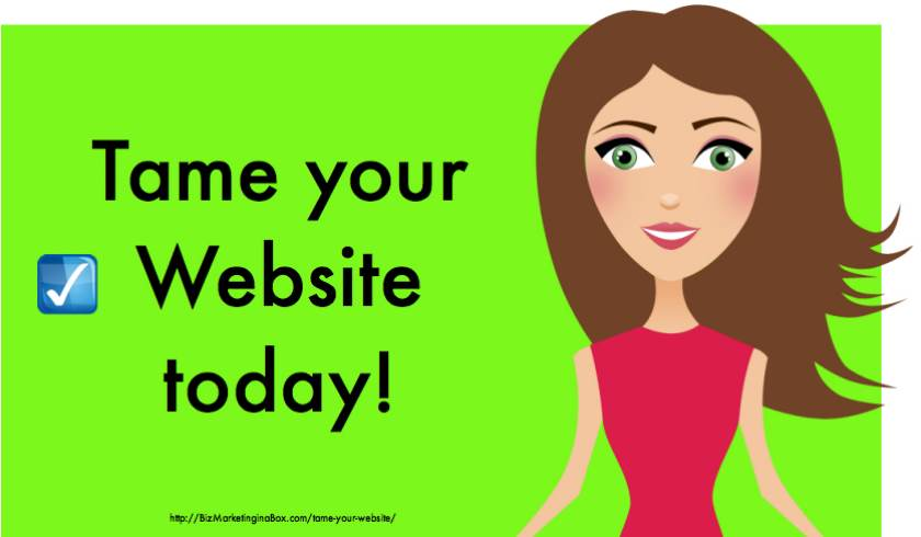 Tame Your Website Today (image of woman)